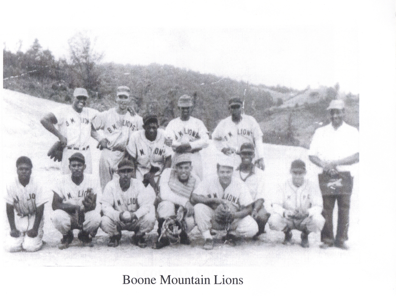 Boone Mountain Lions