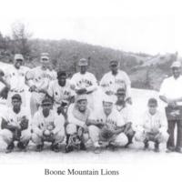 BooneMountainLions2-19-2011 8;28;23 PM.JPG